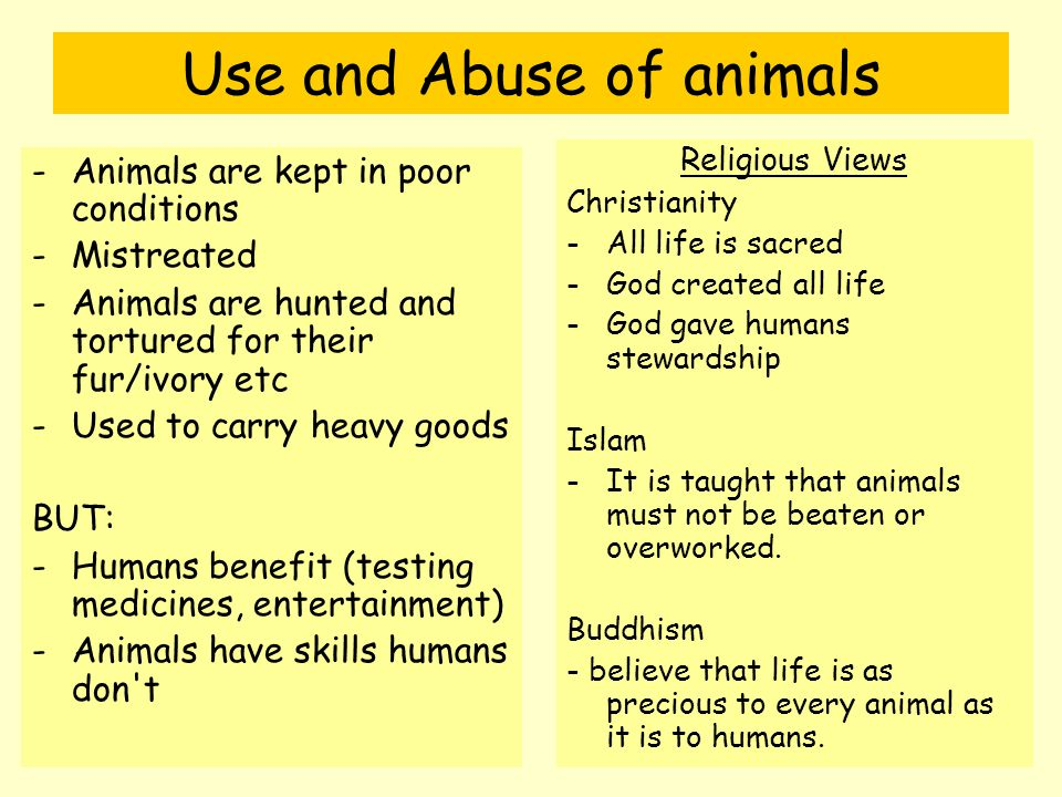 religious views on the fur and ivory trade essay This page is best viewed in an up-to-date web browser with style sheets (css) enabled while you will be able to view the content of this page in your current browser, you will not be able to get.