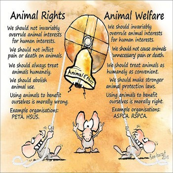 animal-welfare-350x350