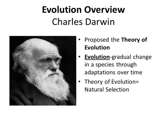 Evolution+Overview+Charles+Darwin